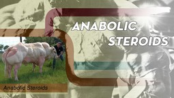 Anabolic Steroids Xây dựng cơ...